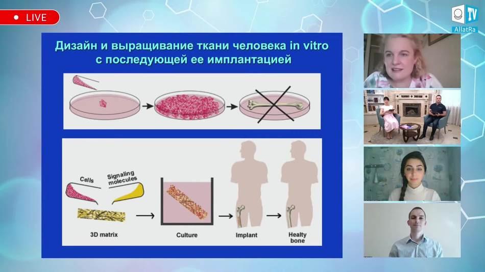 дизайн и выращивание ткани человека