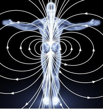 Магнитное поле человека