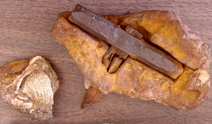 Лондонский молоток. штат Техас, США