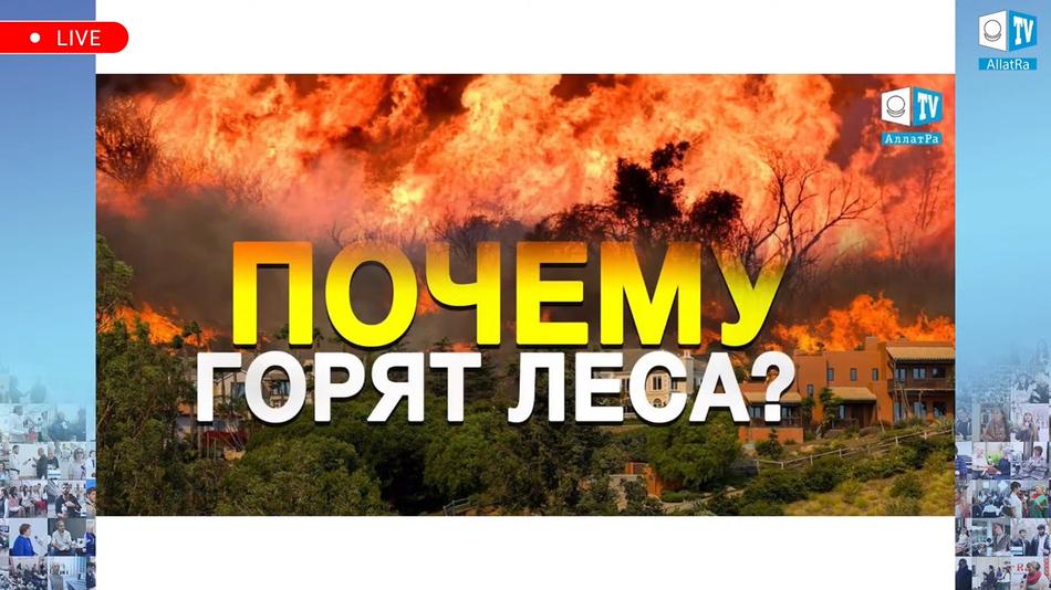почему горят леса