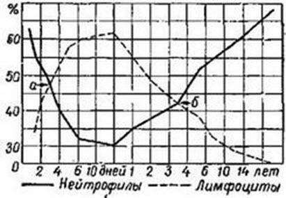 Количество нейтрофилов и лимфоцитов в различные периоды детского возраста