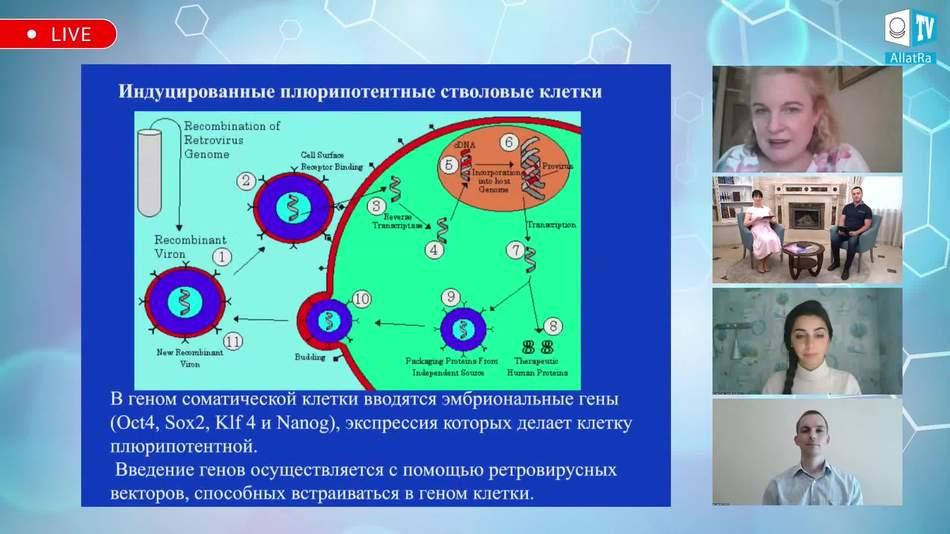 индуцированные плюрипотентные стволовые клетки