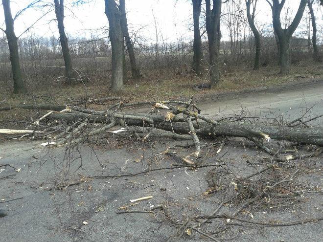 Шторм в Украине 14 декабря 2015