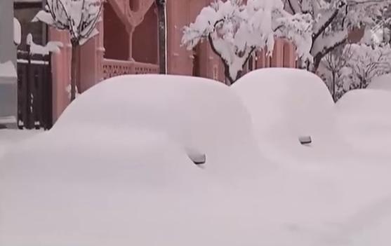 Снегопады в Грузии 26 января 2016
