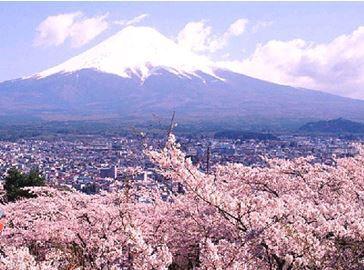 Серия землетрясений на восточном побережье острова Хонсю в Японии 11 июня 2015