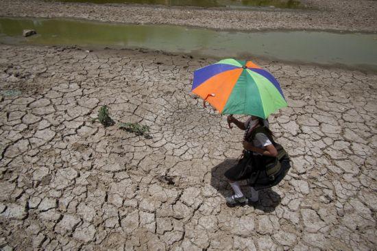 Аномальная жара в Индии