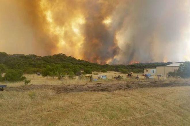Пожары в Австралии 18 ноября 2015