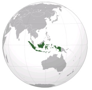 Землетрясения в Индонезии 19 января 2016