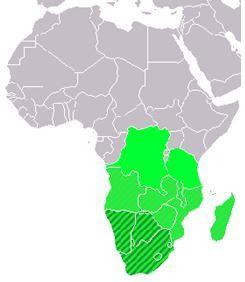 Землетрясение в Южной Африке 24 июня 2015