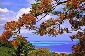 Землетрясение на Марианских островах 25 июля 2015