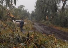 Ураган в Украине 07 сентября 2015