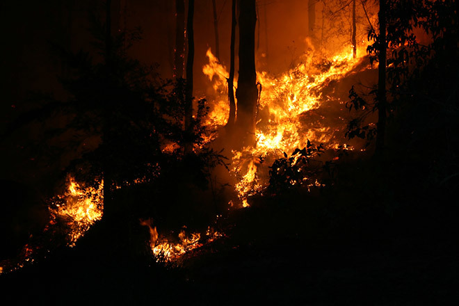 Пожары в Австралии 25 декабря 2015