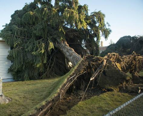 Буря в США 24 ноября 2015