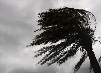 Ураган в Китае 29 августа 2015