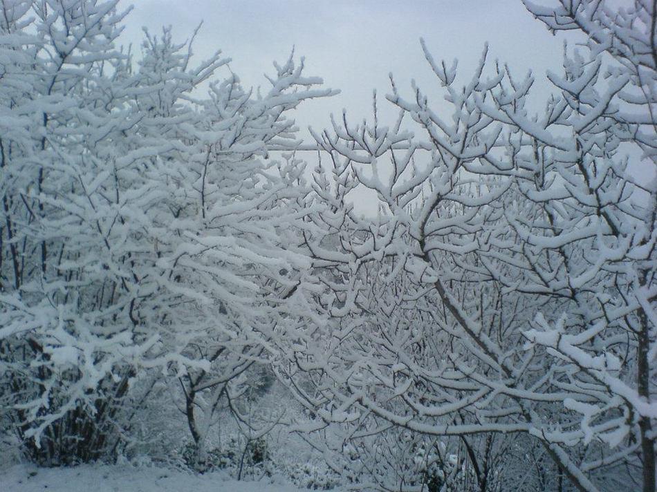 Снегопад в Абхазии 03 января 2016
