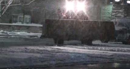 Снегопад в штате Колорадо, США 11 ноября 2015