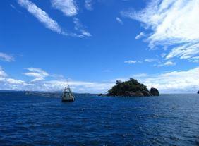 Землетрясение в северной части Тихого океана 25 июля 2015