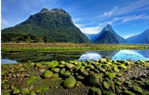 Серия землетрясений в Новой Зеландии 24 июня 2015