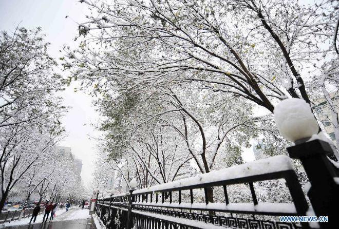 Снегопад в Китае 22 ноября 2015