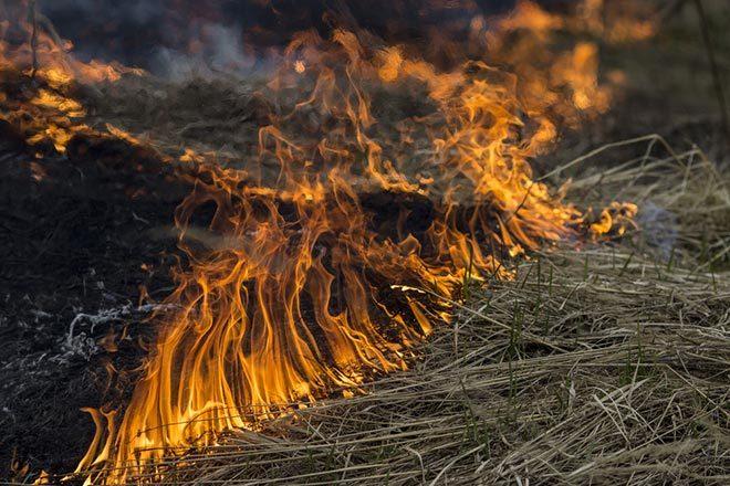 Пожары во Франции 27 декабря 2015