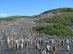 Землетрясение на Южных Сандвичевых островах 09 сентября 2015