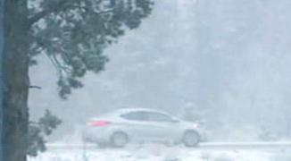 Снег в Калифорнии 08 ноября 2015
