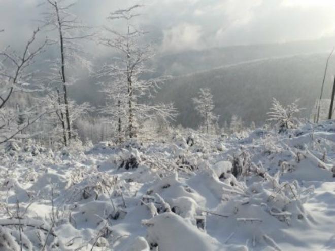Снегопад в Польше 22 ноября 2015