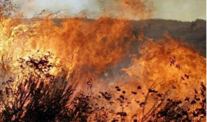 Пожары в Италии 13 декабря 2015