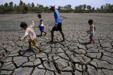 Засуха в Зимбабве 15 марта 2016