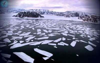Землетрясения в Гренландском море 9 июня 2015